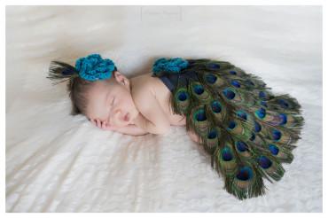 piume di pavone | servizio fotografico per neonato