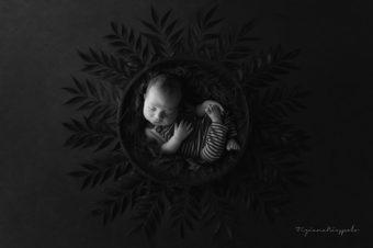 TOP 5 fotografie Newborn Settembre
