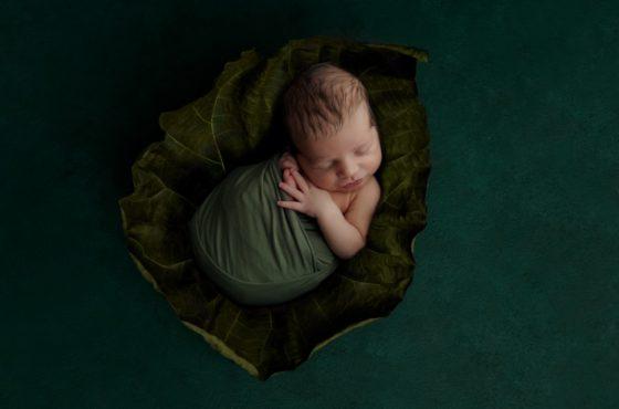 'ONE' il ritratto newborn